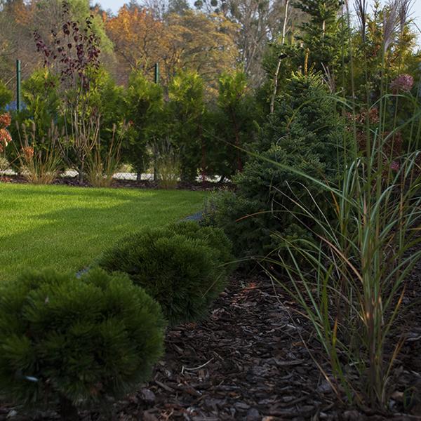 Ogród przy stawach