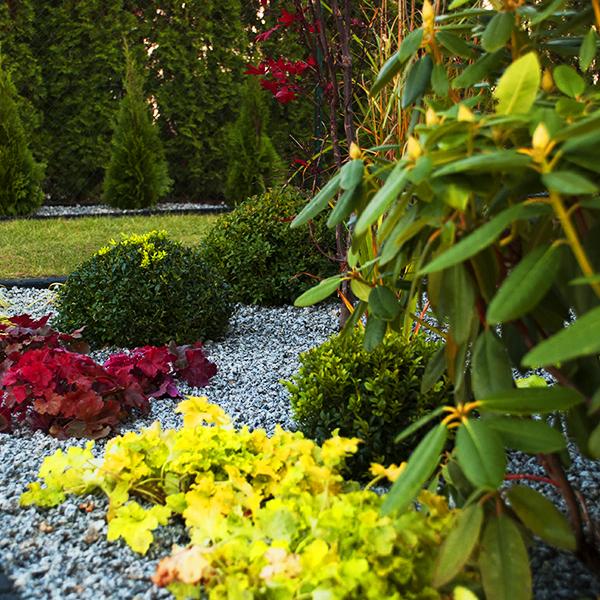 Ogród w kamieniu