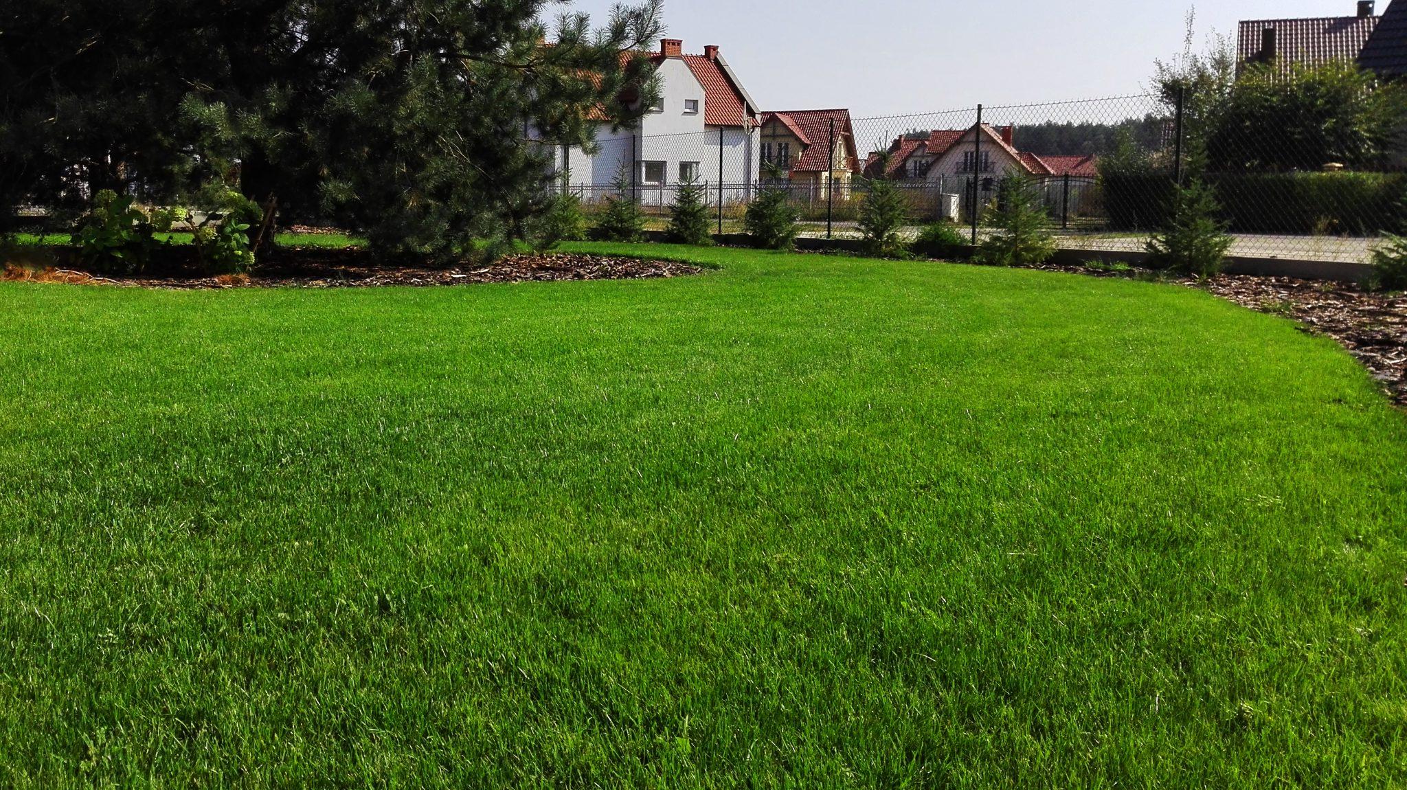 Dobry Ogród pielęgnacja i zakładanie trawnika