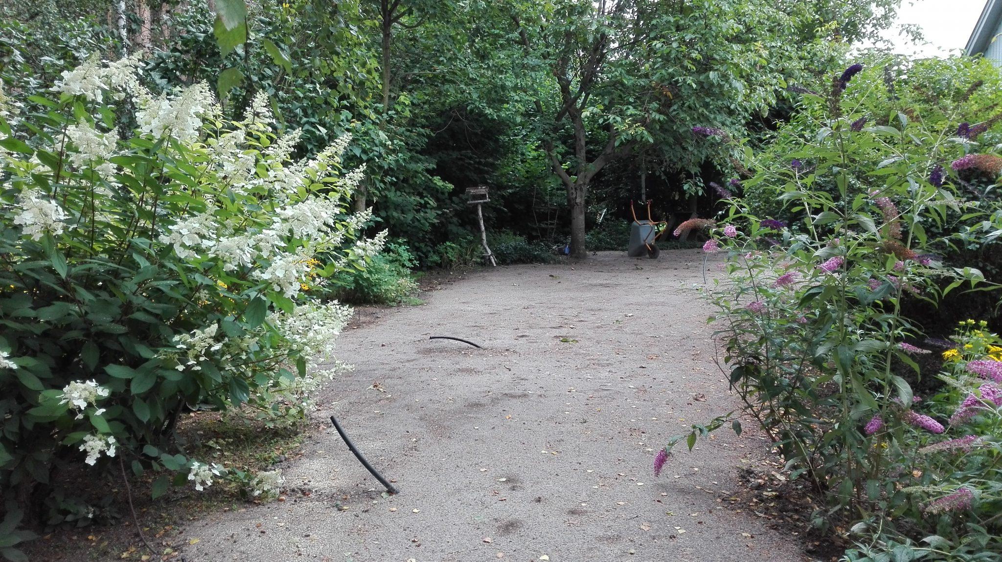 Dobry Ogród zakładanie nawadniania