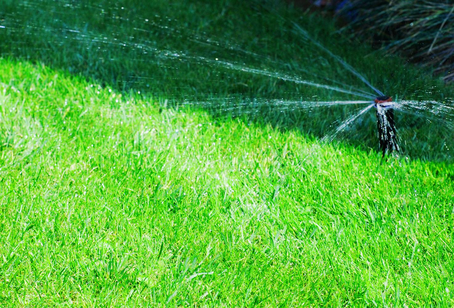 Dobry Ogród Systemy automatycznego nawadniania