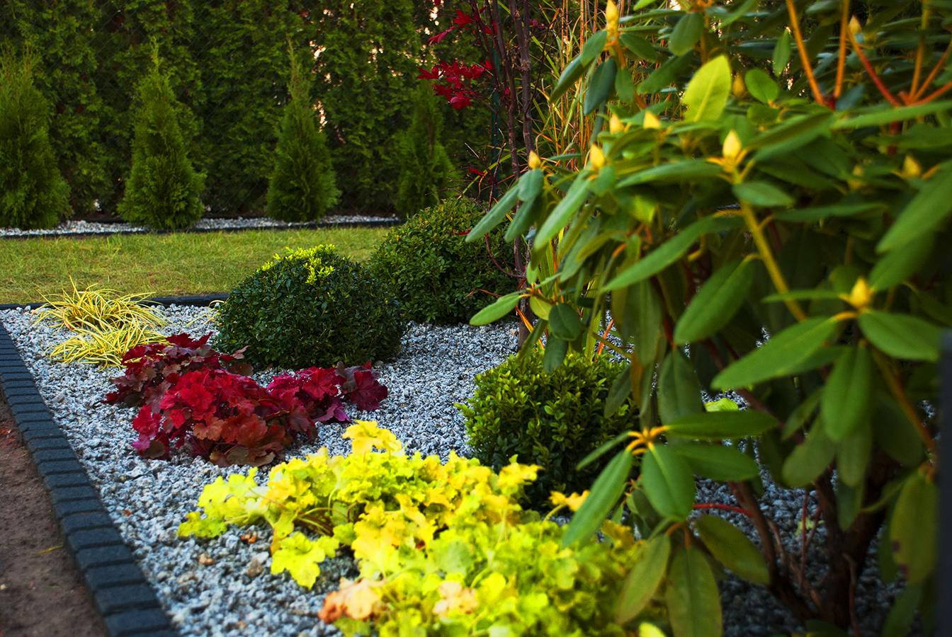 Dobry Ogród Ogród w kamieniu