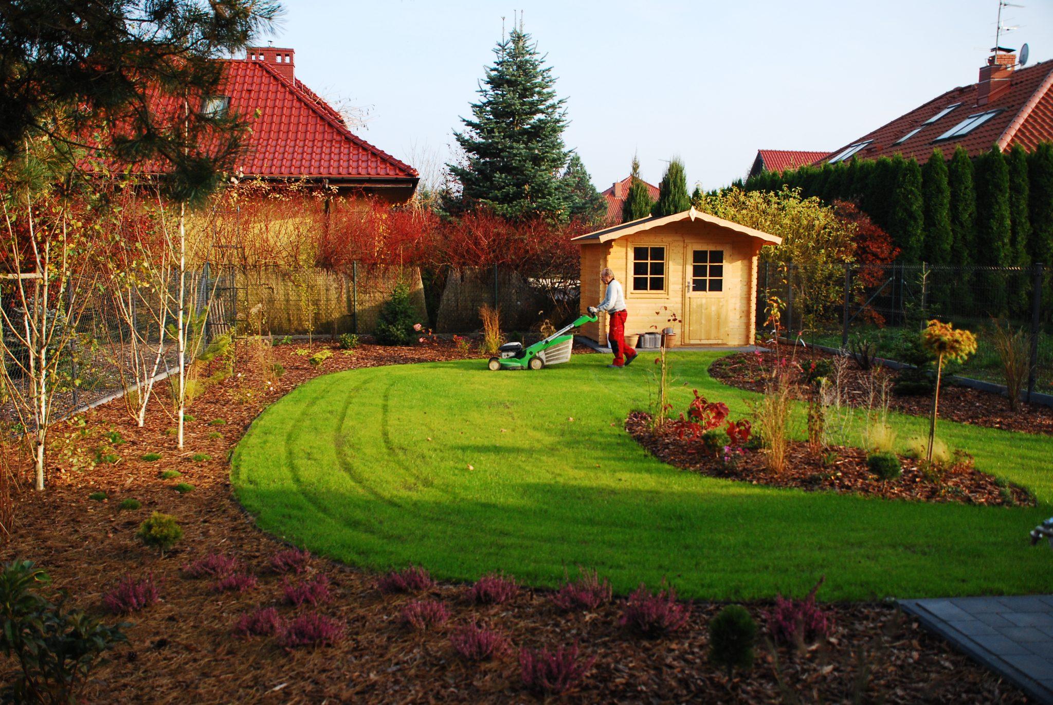 Dobry Ogród Sosnowa romanza trawnik