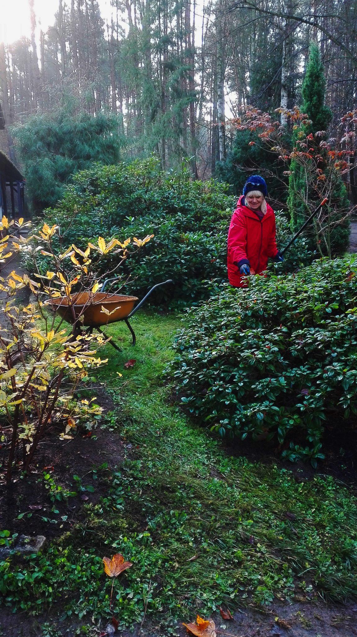 Dobry Ogród Pielęgnacje